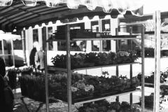 Durlacher Wochenmarkt
