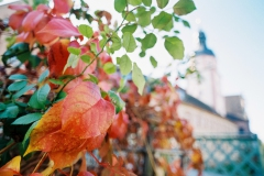 Herbststimmung in Ettlingen